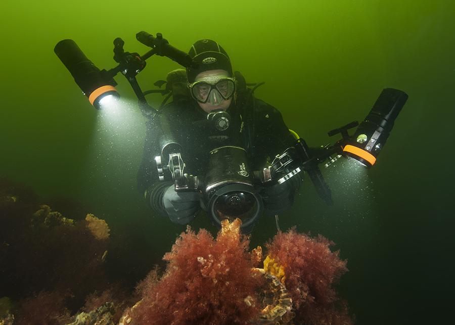 OrcaTorch dive light scuba diving flashlight.jpg