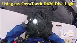 OrcaTorch D620 Canister Dive Light Update