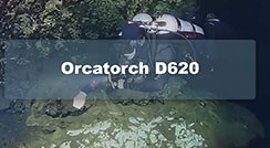 OrcaTorch D620 Primary Canister Dive Light